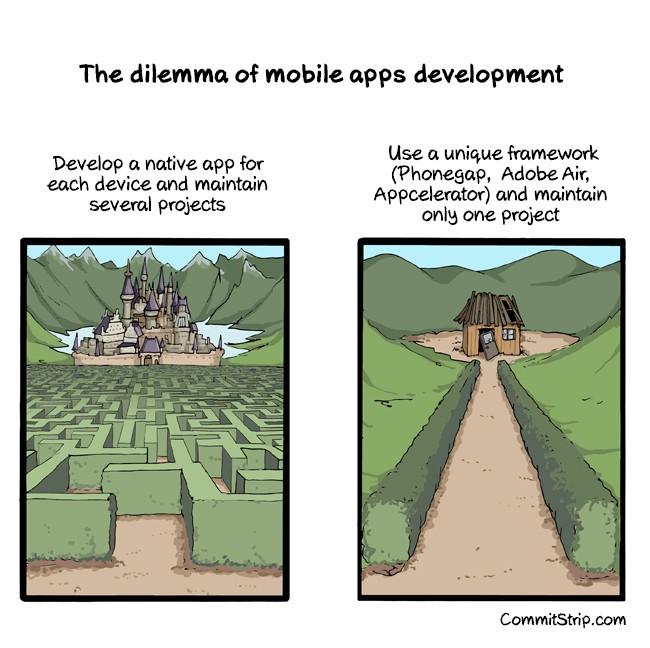 to build a native app or build a cross platform app